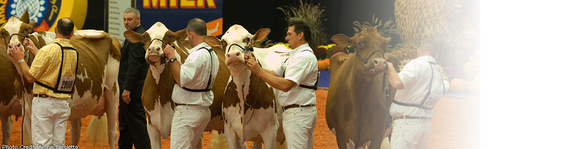 World Dairy Expo | Photo Credit: Archie Nicolette