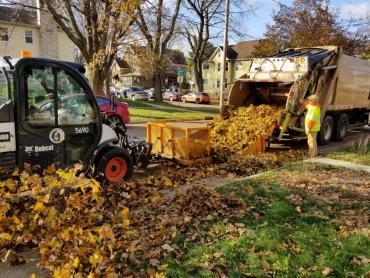 Leaf crew pushing leaves into collection truck. A street sweeper will be through later to collect the leftover debris.