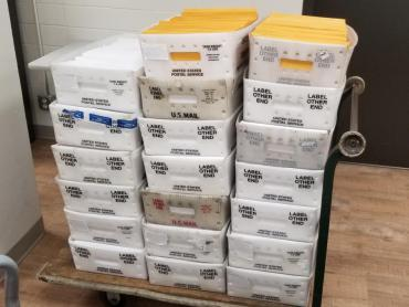 Trays of absentee ballots headed to the Post Office