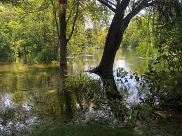 Example of flooding in Madison