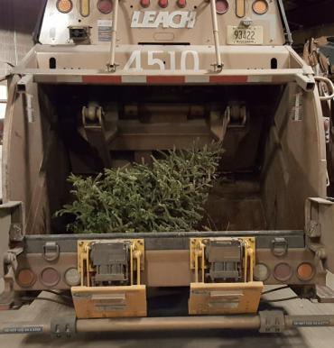 Tree collection begins January 4, 2021