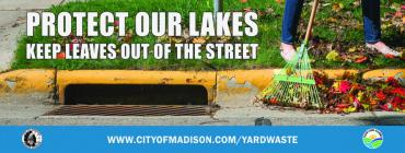 Protect our lakes: keep leaves out of the street
